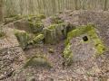 Zbytky objektu Západního valu v lese u Bietzenu.