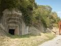 Monte Fortin