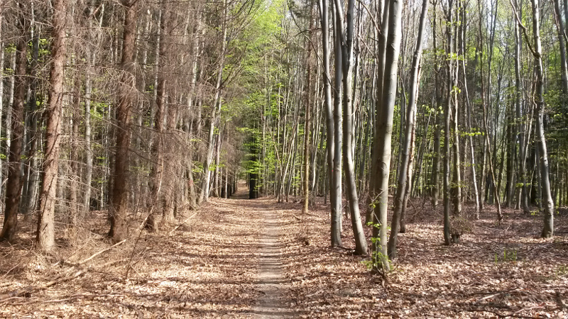 Cestou z Moravy na hřeben Bílých Karpat