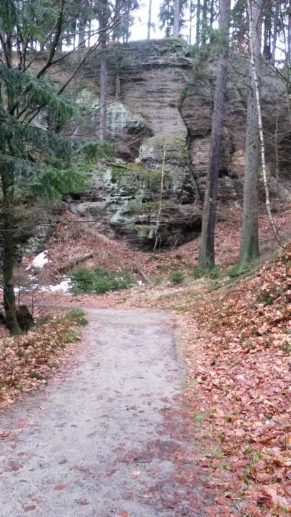 Trail Jetřichovskými stěnami.