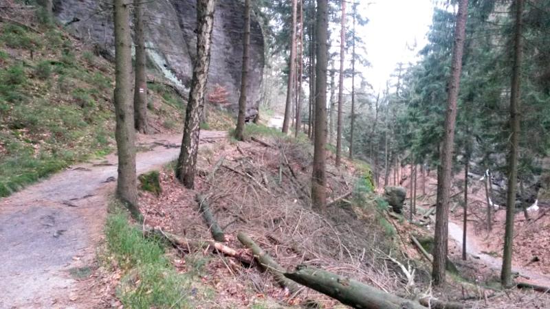 Trail kolem Jetřichovických stěn