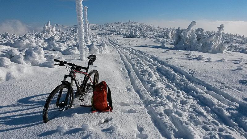 Cestou na Harrachovy kameny (Liberecký kraj). Půl hodiny na to se zatáhlo a zbytek probíhal v totální mlze.