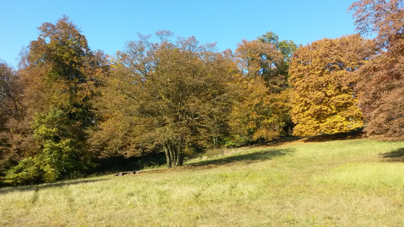 Pánova Lúka a barvy podzimu.