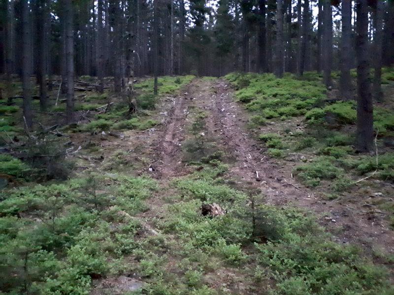Tak nevím, sice to není asfalt, ale do toho kopce už to taky moc nejde.