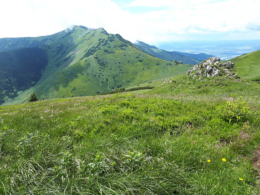 Pohled z Pekelníku na Malý Kriváň