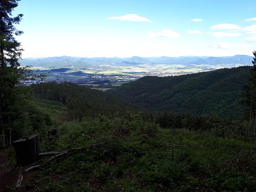 Ze stoupání na Minčol. Dole na slunci Martin, hory za ním jsou Velká Fatra.