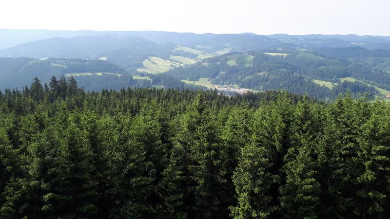 Pohled z rozhledny Miloňová.